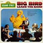 Sesame Street: Big Bird Leads the Band by Big Bird