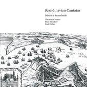 Buxtehude: Scandinavian Cantatas by Various Artists