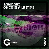 Once in a Lifetime von Richard Grey