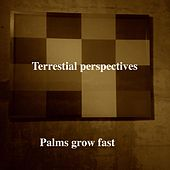 Palms Grow Fast by Terrestial Perspectives