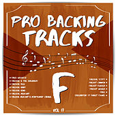 Pro Backing Tracks F, Vol.17 by Pop Music Workshop