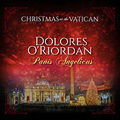 Panis Angelicus (Christmas at The Vatican) (Live) de Dolores O'Riordan