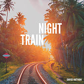 Night Train von David Nathan