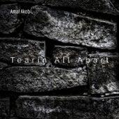 Tearin All Apart by Amal Akob