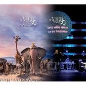 Bitte hör nicht auf zu träumen - Wild vor Wut by Xavier Naidoo