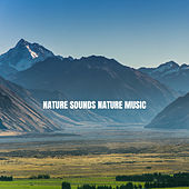 Nature Sounds Nature Music von Massage Therapy Music
