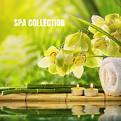 Spa Collection de Relajacion Del Mar