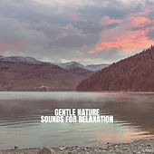 Gentle Nature Sounds for Relaxation by Rain Sounds Nature Collection