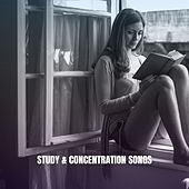 Study & Concentration Songs by Musica Relajante