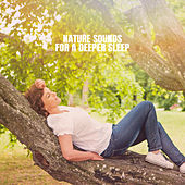 Nature Sounds For A Deeper Sleep by Rain Sounds Nature Collection