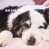 Blue Sleep Sounds van Lullaby Babies