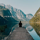 Perfect Meditation by Various Artists