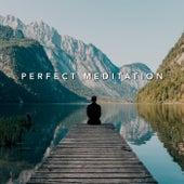Perfect Meditation de Various Artists