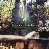 Ama Remixes by Yola