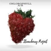 Strawberry Project van Chlorophyll AB