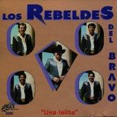 Una Islita by Los Rebeldes del Bravo