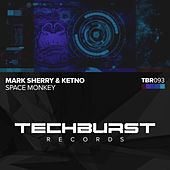 Space Monkey by Mark Sherry