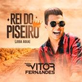 Rei do Piseiro (Joga Água) von Vitor Fernandes