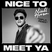 Nice To Meet Ya (Diplo Remix) de Niall Horan