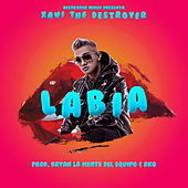 Labia de Xavi the Destroyer