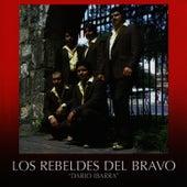 Dario Ibarra by Los Rebeldes del Bravo