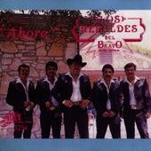 Ahora by Los Rebeldes del Bravo