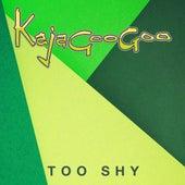 Too Shy von Kajagoogoo