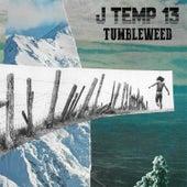 J Temp 13: