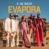 Evapora by IZA