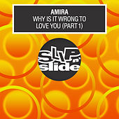 Why Is It Wrong To Love You, Pt. 1 by Amira