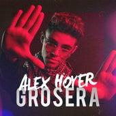Grosera de Alex Hoyer