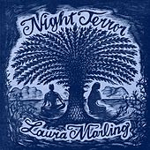 Night Terror de Laura Marling