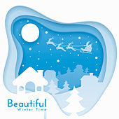 Beautiful Winter Time by Various Artists