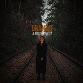 Le nostre verità von Brando