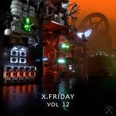 X. Friday Vol.12 de Various Artists