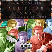 All I Can Say by Ray Silver
