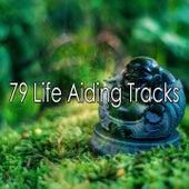 79 Life Aiding Tracks de Exam Study Classical Music Orchestra