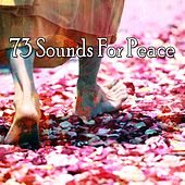 73 Sounds for Peace von Guided Meditation