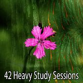 42 Heavy Study Sessions von Massage Therapy Music