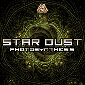 Photosynthesis de Stardust