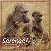 Memories of the Serengeti by VARIOUS