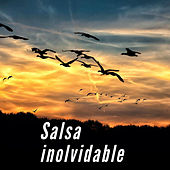 Salsa Inolvidable de Various Artists