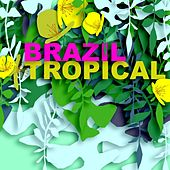 Brazil Tropical by Various Artists