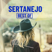 Sertanejo Best Of de Various Artists