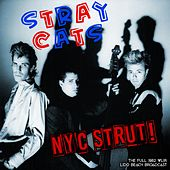 NYC Strut de Stray Cats