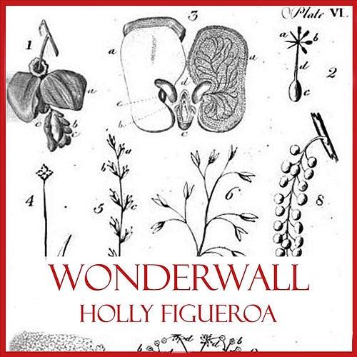 Wonderwall by Holly Figueroa