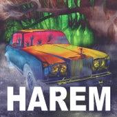 Harem by Dainius