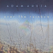 Over the Rainbow (live-looping) by Adam Ahuja