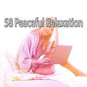 58 Peaceful Relaxation by Ocean Sounds Collection (1)