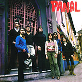 Panal by Panal